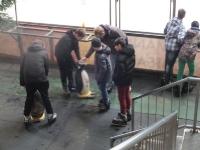 Schlittschuhlaufen im Icehouse am 30. Januar 2016_3